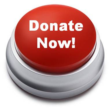 AH Donate Now Button1
